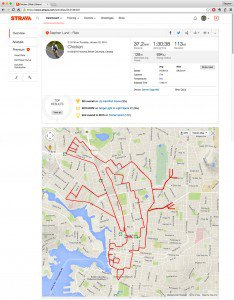 strava-art-chicken