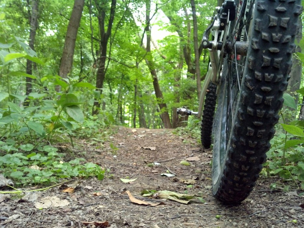 Vassar-Farms-Mountain-Bike-Singletrack-2