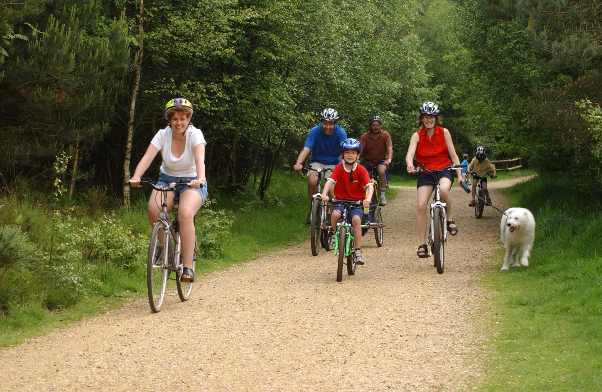 cyclingggg (1)