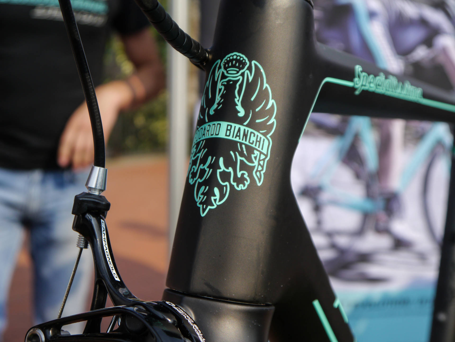 Bianchi Specialissima CounterVail (4)