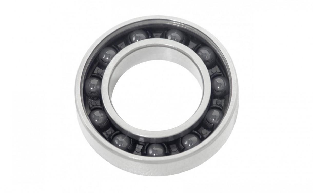 ceramic bearings (3)
