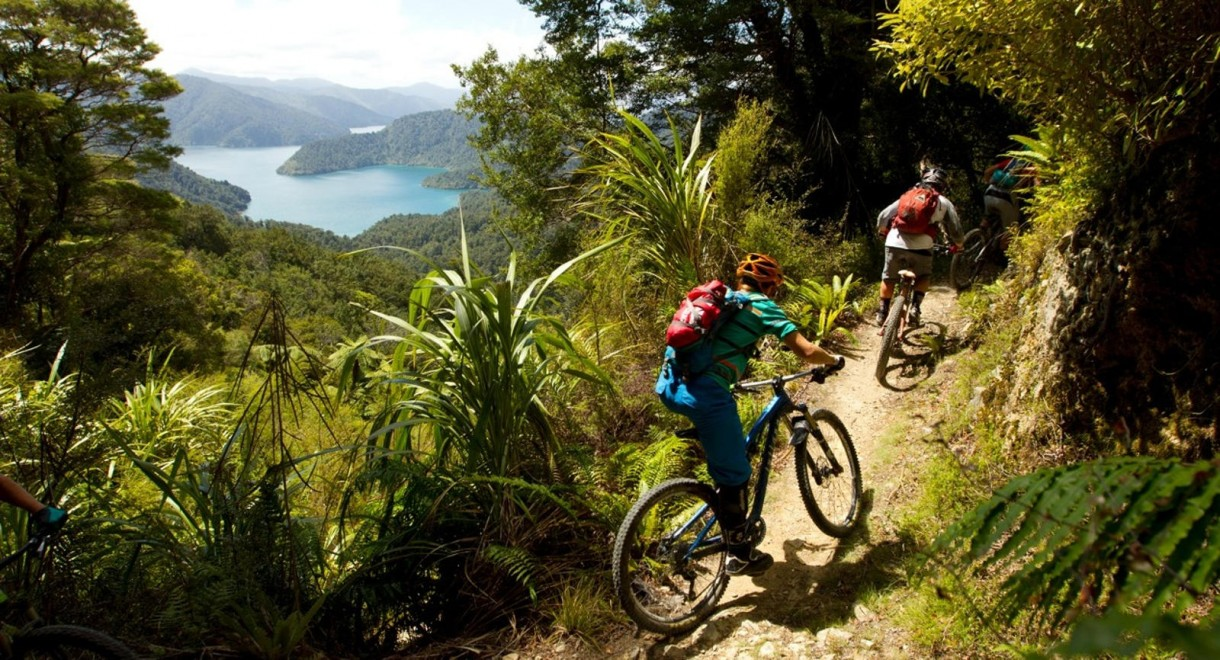 mtb enduro nelson new zealand