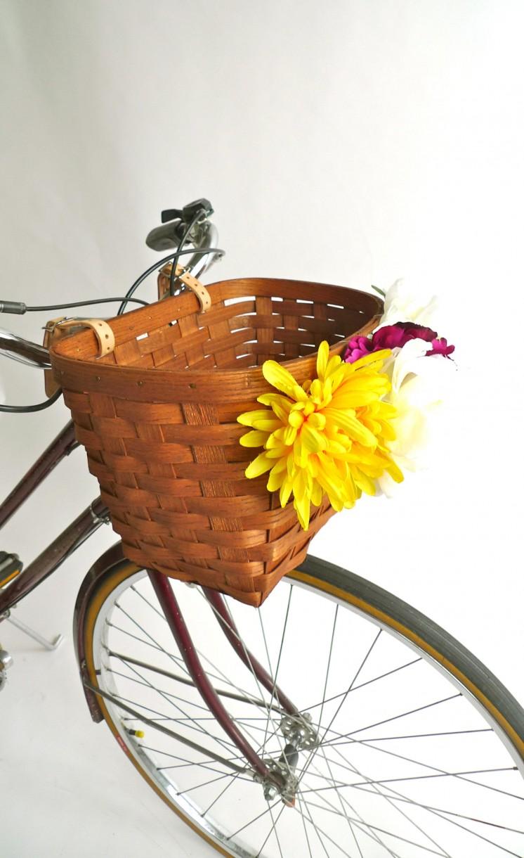 kalathi me loyloydia city bike (2)