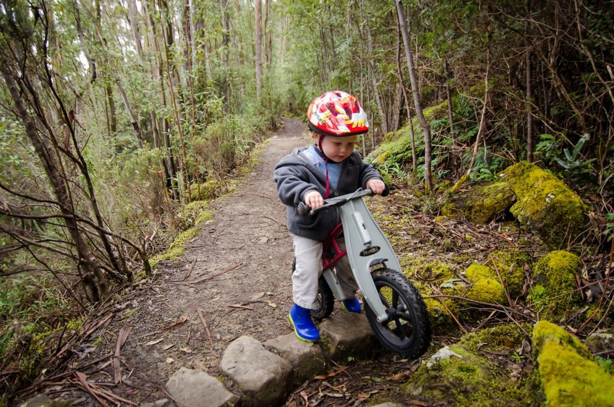 kid bicycle (4)