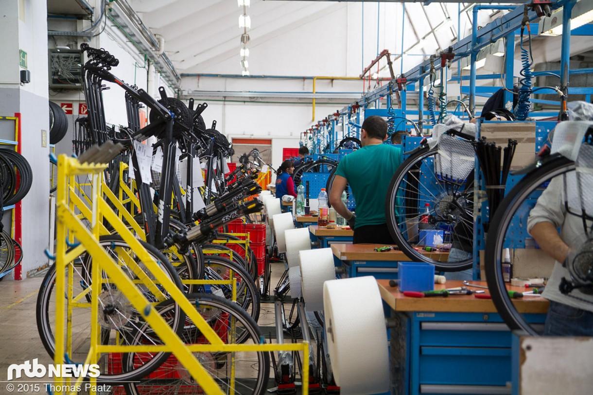 Ούτε ένας, ούτε δύο τεχνικοί για να μοντάρουν τα ποδήλατα.