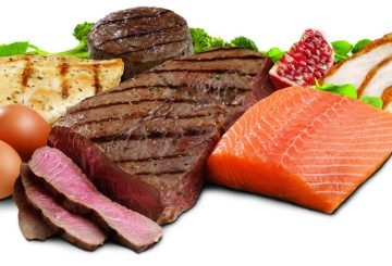 protein sources (1)