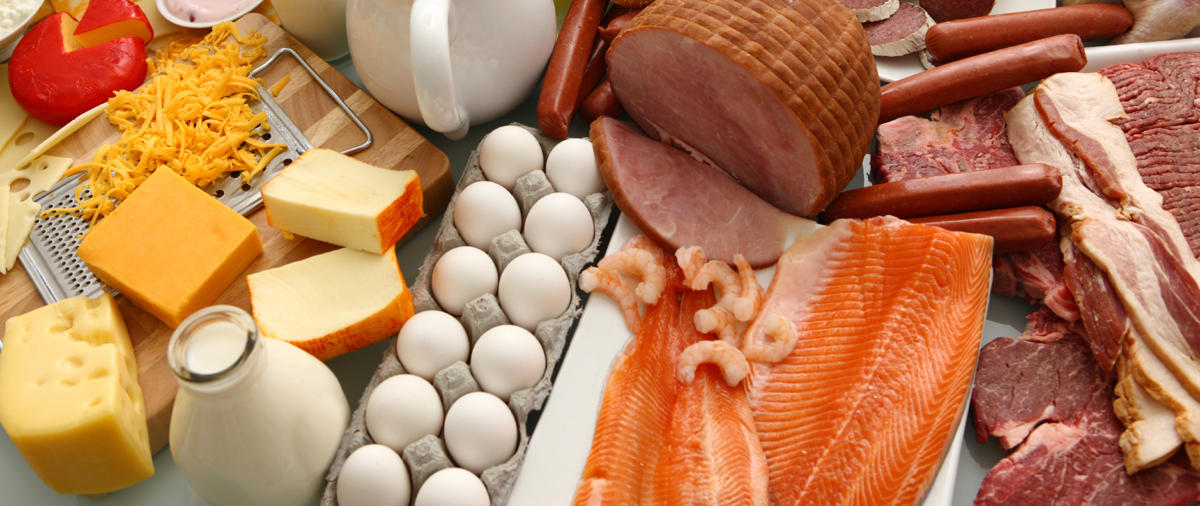 protein sources (2)