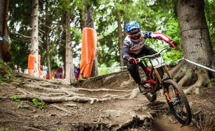 gwin downhill roots leogang