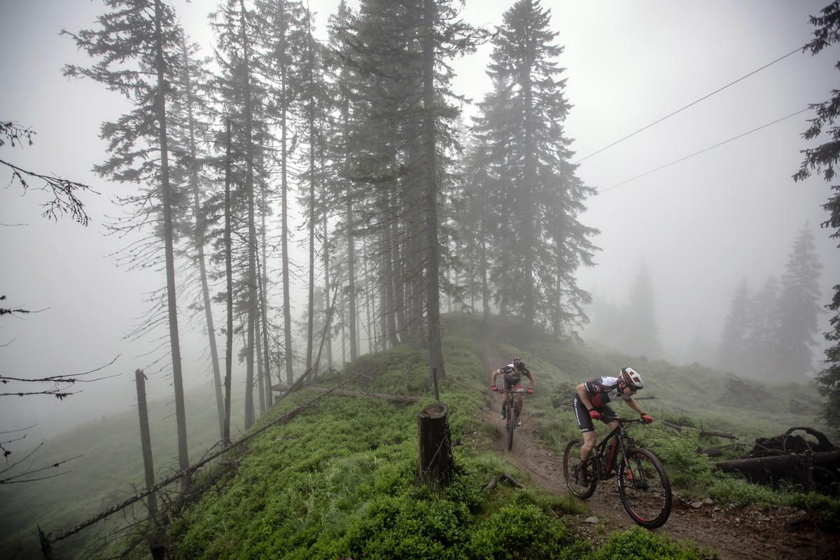 rocky mountain element mtb action forest fog (1)