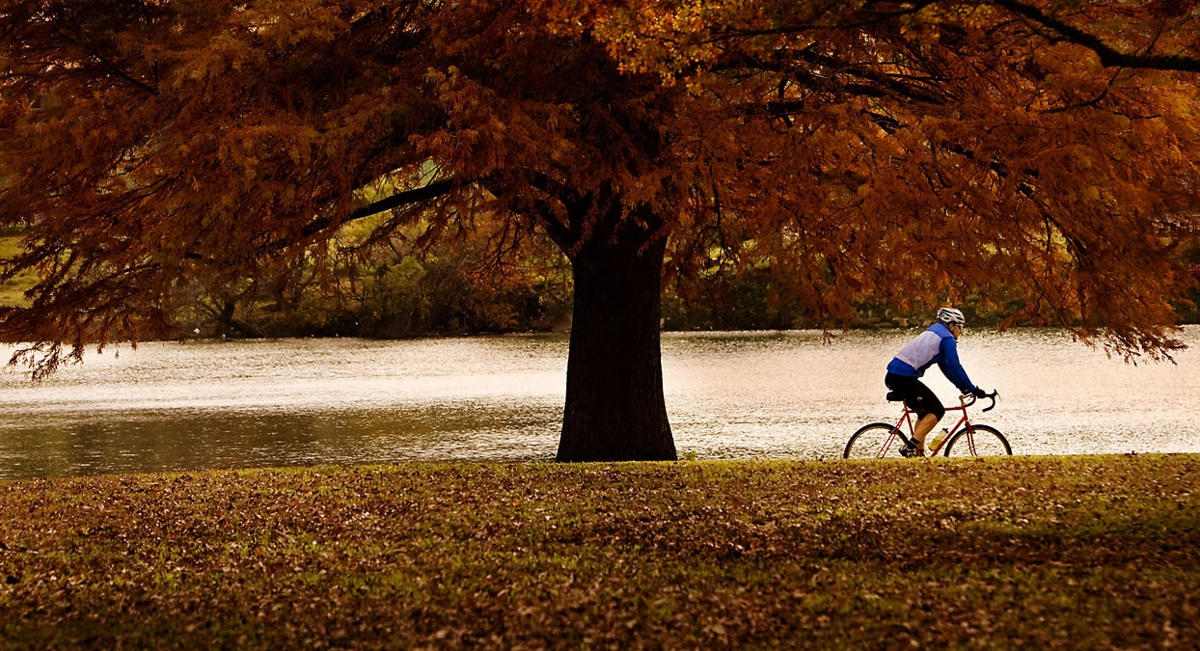 fall-cycling