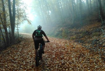 hortiatis-mtb-fallen-leaves-autumn