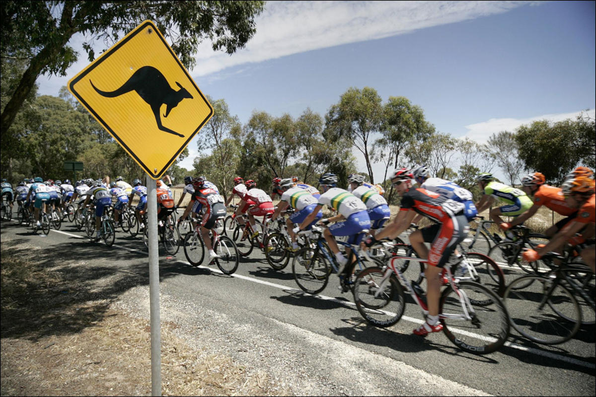 tour-down-under-2016-kangaroo-sign-road-bike-peloton