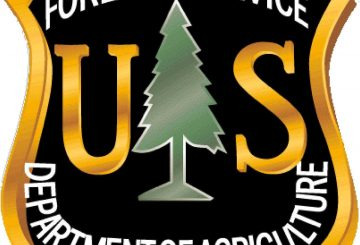 us forest servie