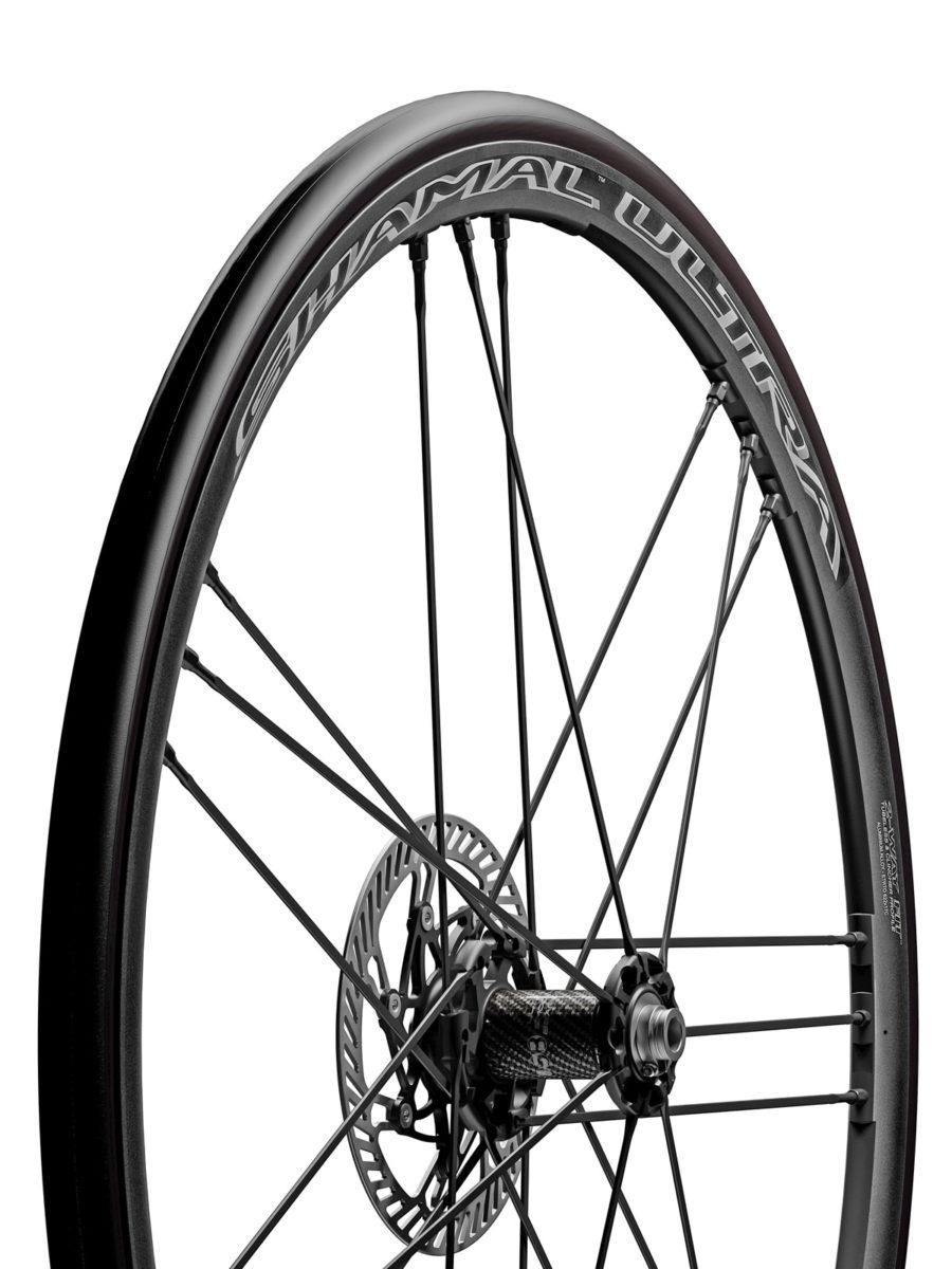 campagnolo disk brakes (2)